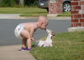 funny picture: child gives dog kiss