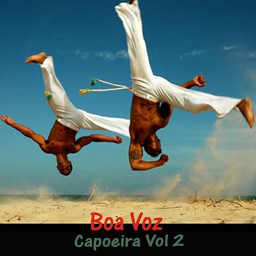 MESTRE BOA VOZ - VOLUME 2
