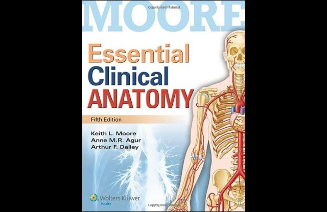 Anatomy Coloring Book Third Edition Essential Clinical Th Moore Pdf Download