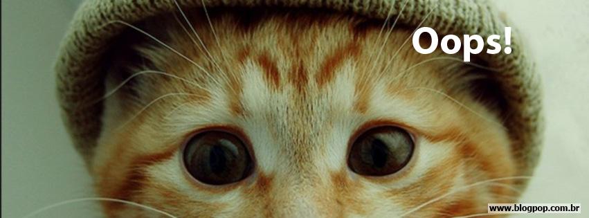 Fotos de cachorros e gatos fofos - MundodasTribos