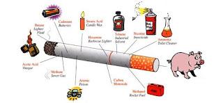 Rokok Mengandung Darah Babi