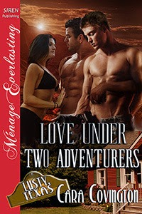 https://www.goodreads.com/book/show/17795823-love-under-two-adventurers
