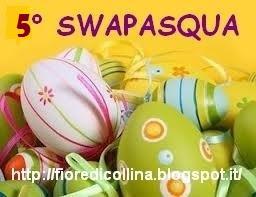 5° Swapasqua by Fiore