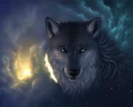 Lobo do Cerrado - CLIQUE COM O BOTÃO DIREITO NA IMAGEM E VÁ EM - ABRIR LINK EM UMA NOVA GUIA