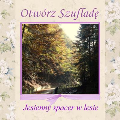 http://szuflada-szuflada.blogspot.com/2015/11/otworz-szuflade-jesienny-spacer-w-lesie.html