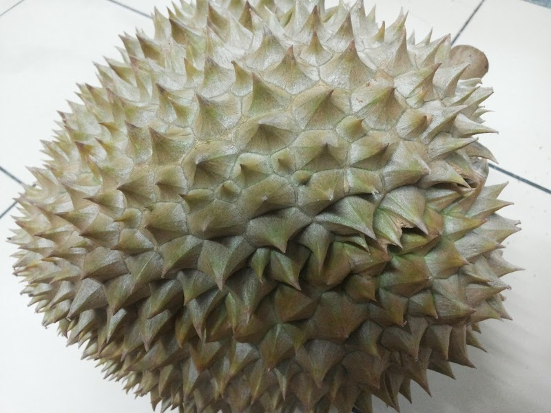 Durian Time @ Hantu Durian