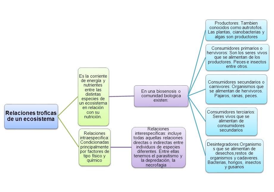 Relaciones troficas de un ecosistema