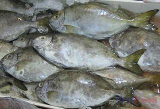 Danggit - Philippine fish
