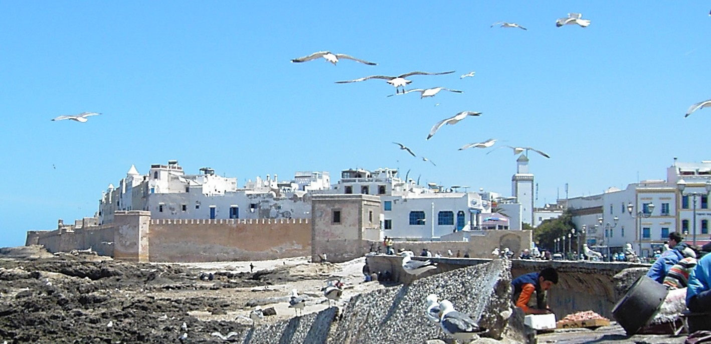 Travel My Way Africa Morocco Essaouira