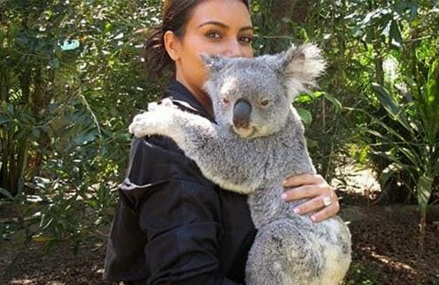 Kim Kardashian hugs Koala