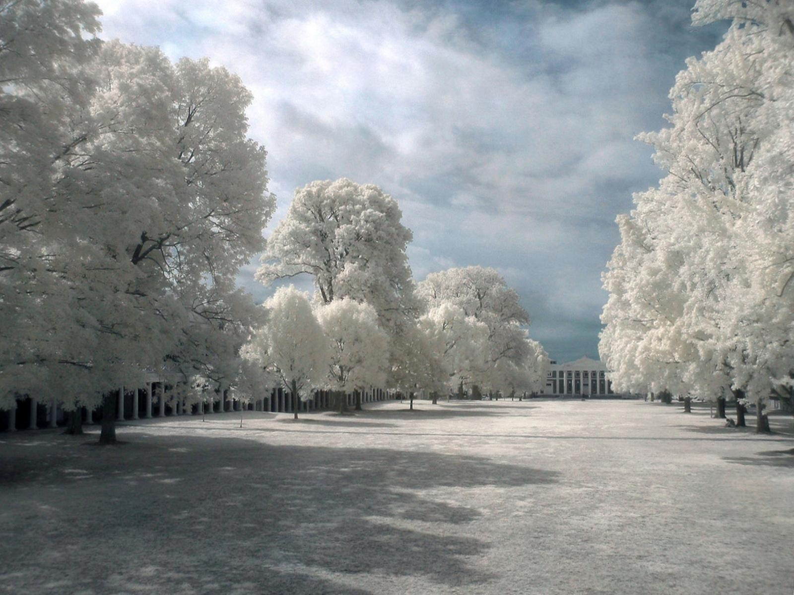 http://2.bp.blogspot.com/-3aHoP4ev6gM/TkanJat4BSI/AAAAAAAAAsY/DBnzhac9oaY/s1600/Winter+Scenery+%252830%2529.jpg