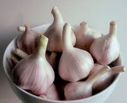 فوائد الثوم وكيفية الاستفادة منه في المطبخ