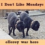 I Don't Like Monday's!!!