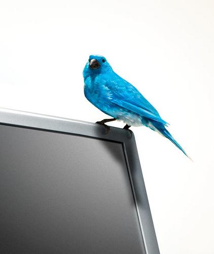 twitter educación empleo trabajo profesores alumnos