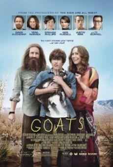 Gã Chăn Dê - Goats