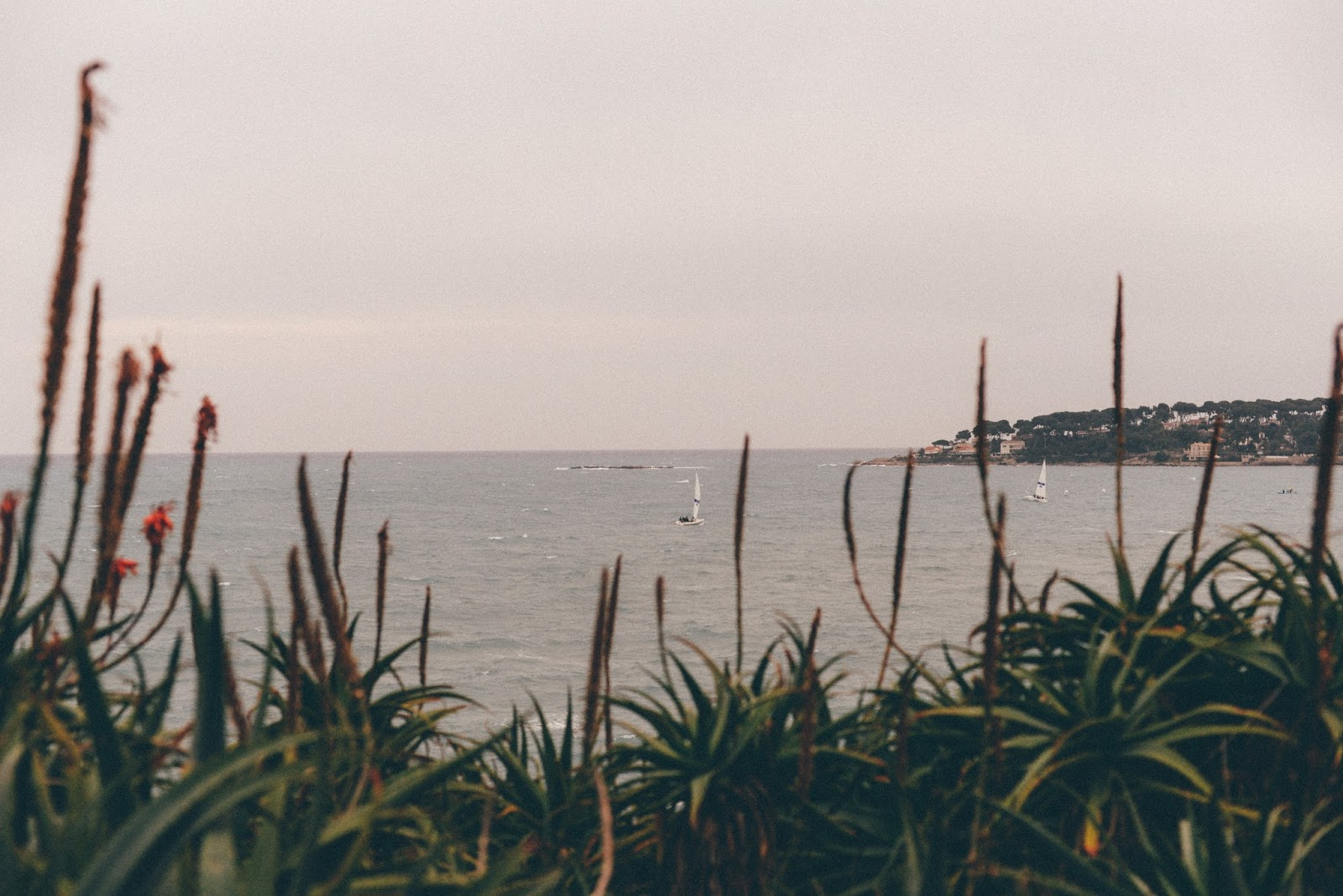 Antibes bord de mer