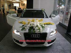 Hoa xe cưới MS014