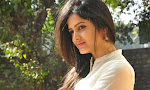 Pavani Gangireddy photos at MMIRR success meet-thumbnail