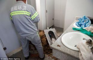Melahirkan Di Toilet Bayi Tersangkut Dalam Pipa