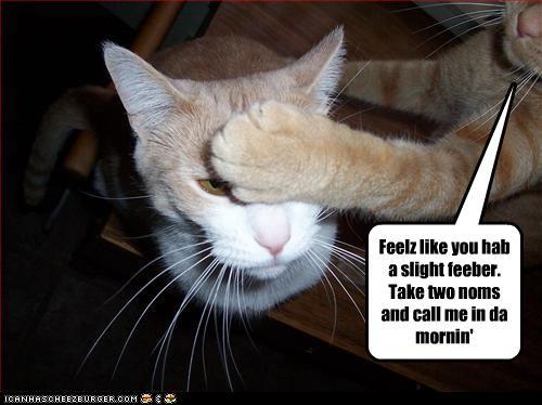 Feel better cat