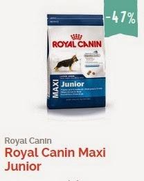 royal canin, purina online, pienso para perros barato, pienso barato, comida para perros online