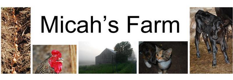 Micahs Farm