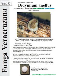 http://fungavera.com/fungavera/funga pdf/90_Didymiumanellus.pdf