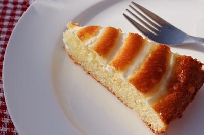 طريقة عمل الكيكة الحلزونية بالزبادي, الكيكة الحلزونية, الزبادي,  طريقة عمل الكيك, طريقة عمل كيكة حلزونية, طريقة عمل كيك