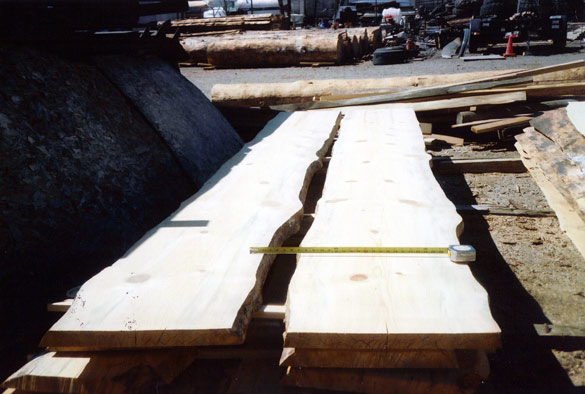 Rough Cut Lumber ~ Florida mountain life december