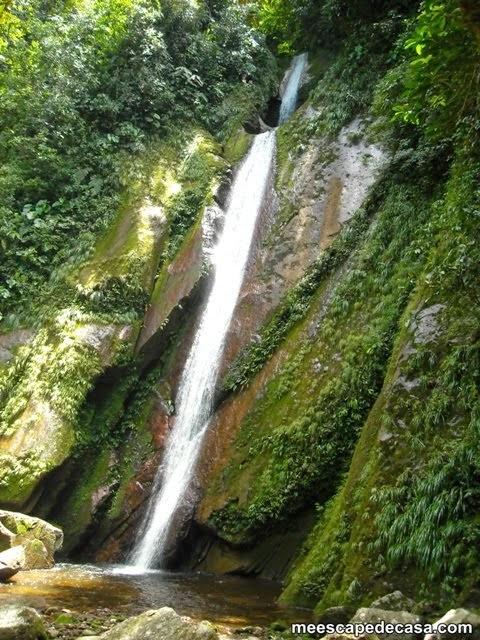 Cascada Tamushal (Cordillera Azul, Perú)