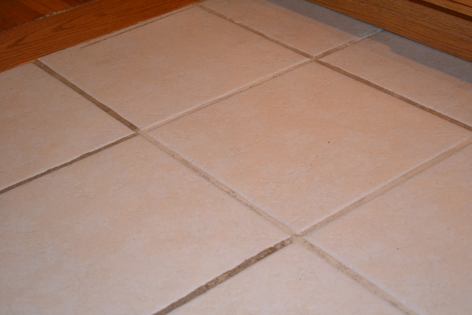 Snippets of wonderful grout cleaning for Grout cleaner