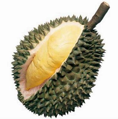 buah durian dan penurunan barat badan