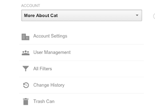 Select Google Analytics Account in Admin section