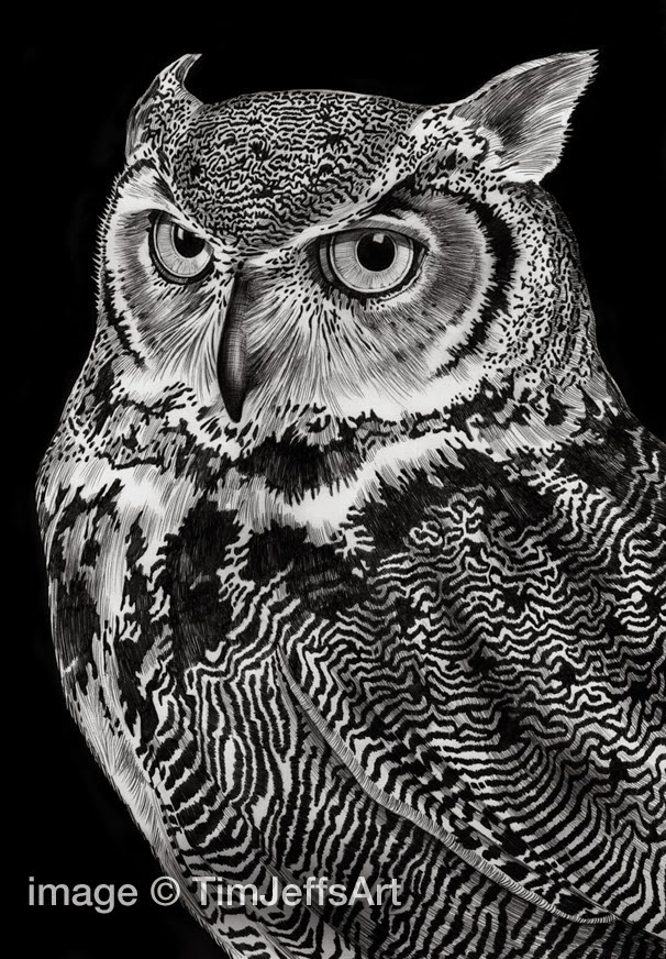 04-Great-Horned-Owl-Tim-Jeffs-All-Creatures-Great-and-Small-Ink-Drawings-www-designstack-co