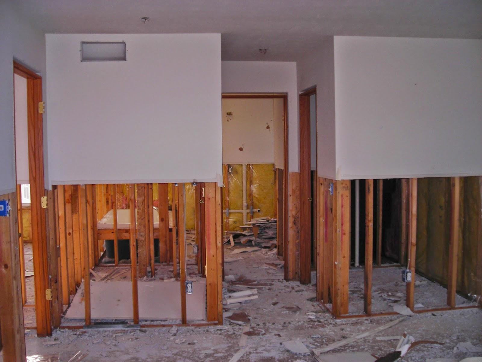 Magenta Kitchen Walls
