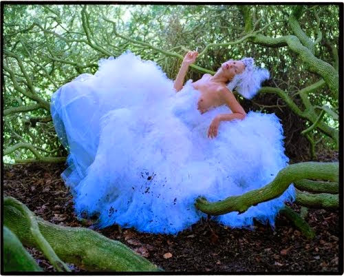 O Blogue da moda: actualidade, artes, literatura, jardinagem, família e muitas outras coisas