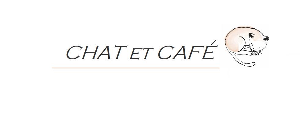 chat et café