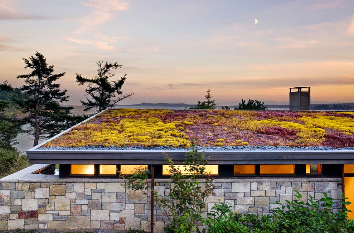 Rumah Idaman Minimalis 1 Lantai Terbaru 2014