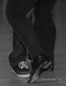 Foxkurs med Harald Stribén, foto: dansbilder.se