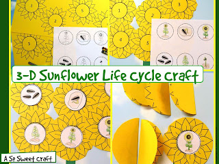 3-D sunflower craftivity
