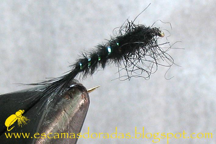 Escamas doradas ninfa negra carbonilla for Carpa koi negra