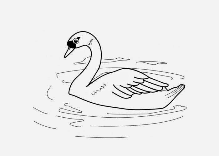 free swan coloring pages - photo#21