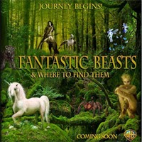 Fantastic Beasts & Where to find them fan banner