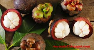 http://wa-emief.blogspot.com/2015/10/manfaat-buah-manggis-bagi-kesehatan-ibu.html