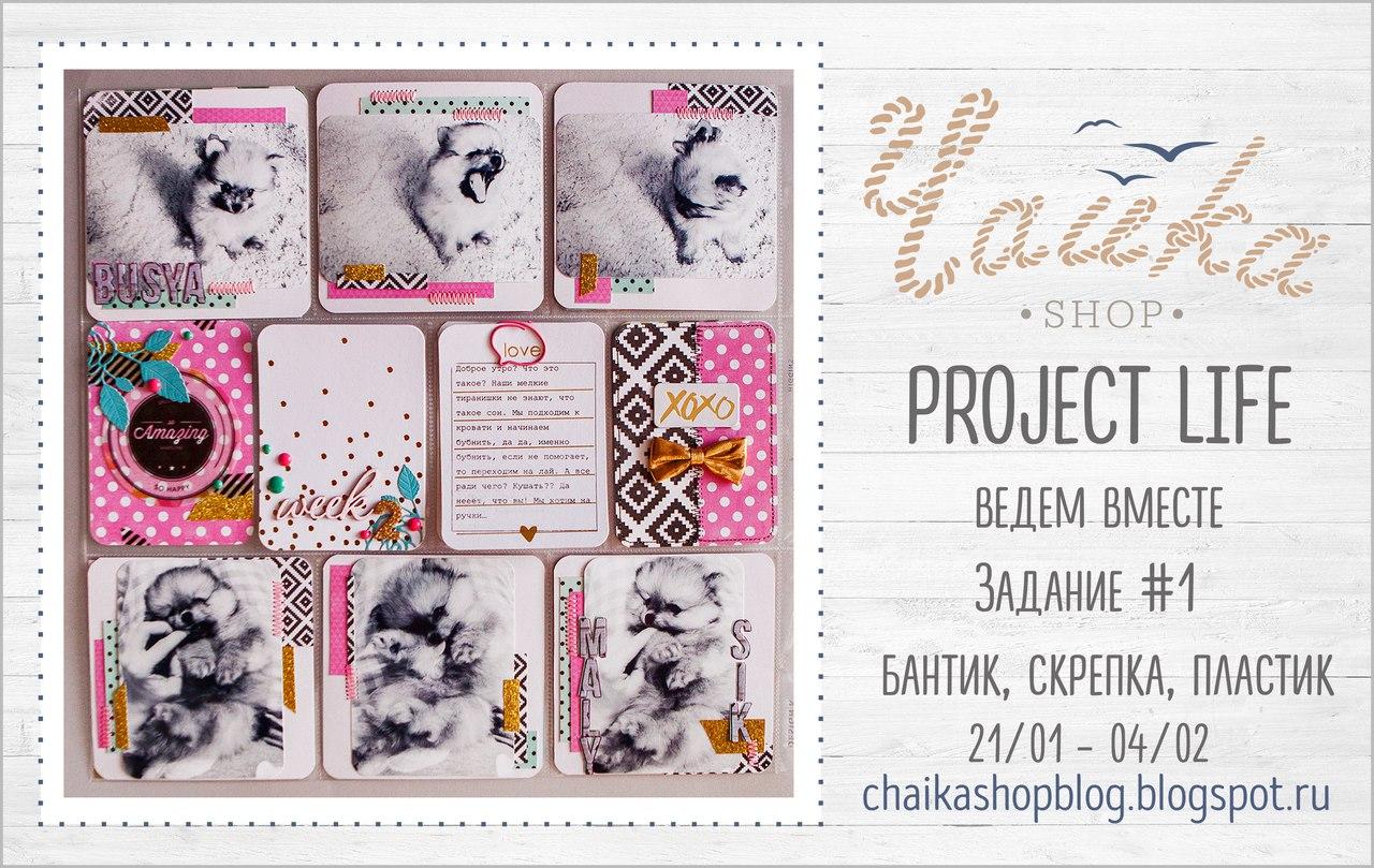 Project life c блогом Чайка shop
