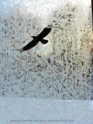 verschiedene bildern, Gebäude, Friedrich Strasse, winter