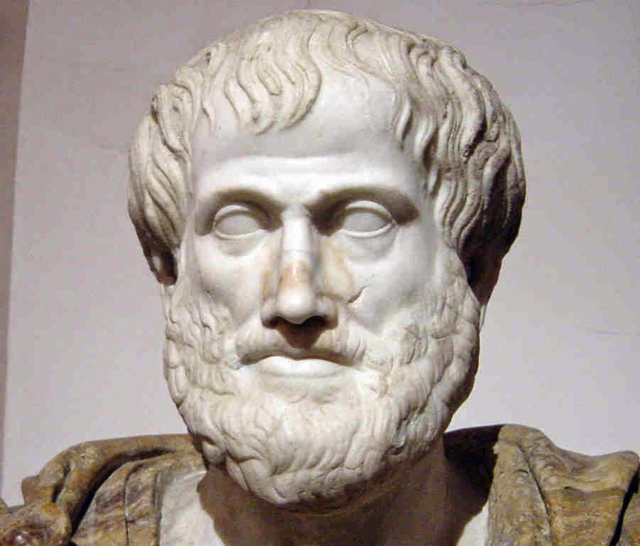 Scientist : Aristotle