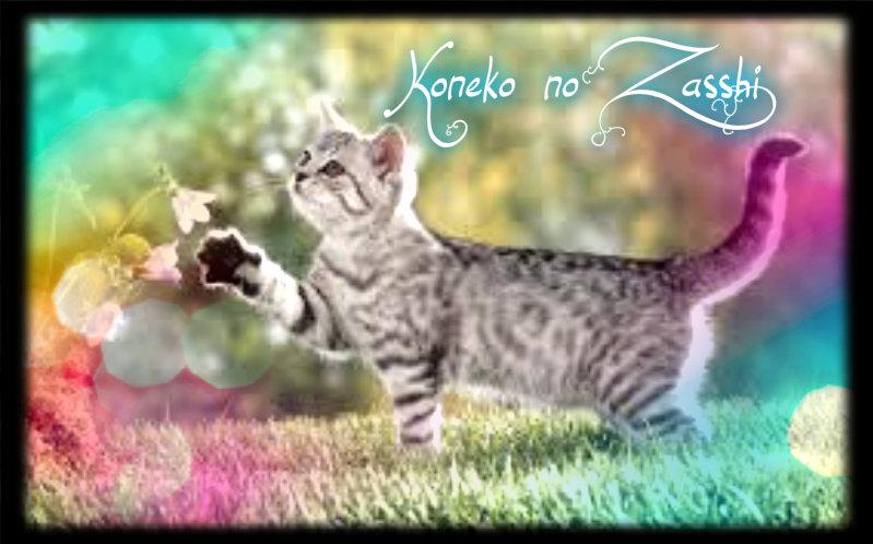 koneko no zasshi
