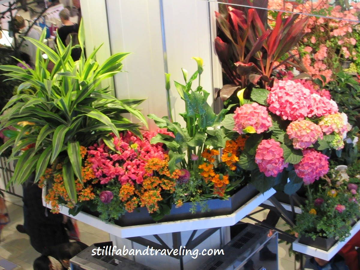 Flower displays at Macy's Flower Show in NYC