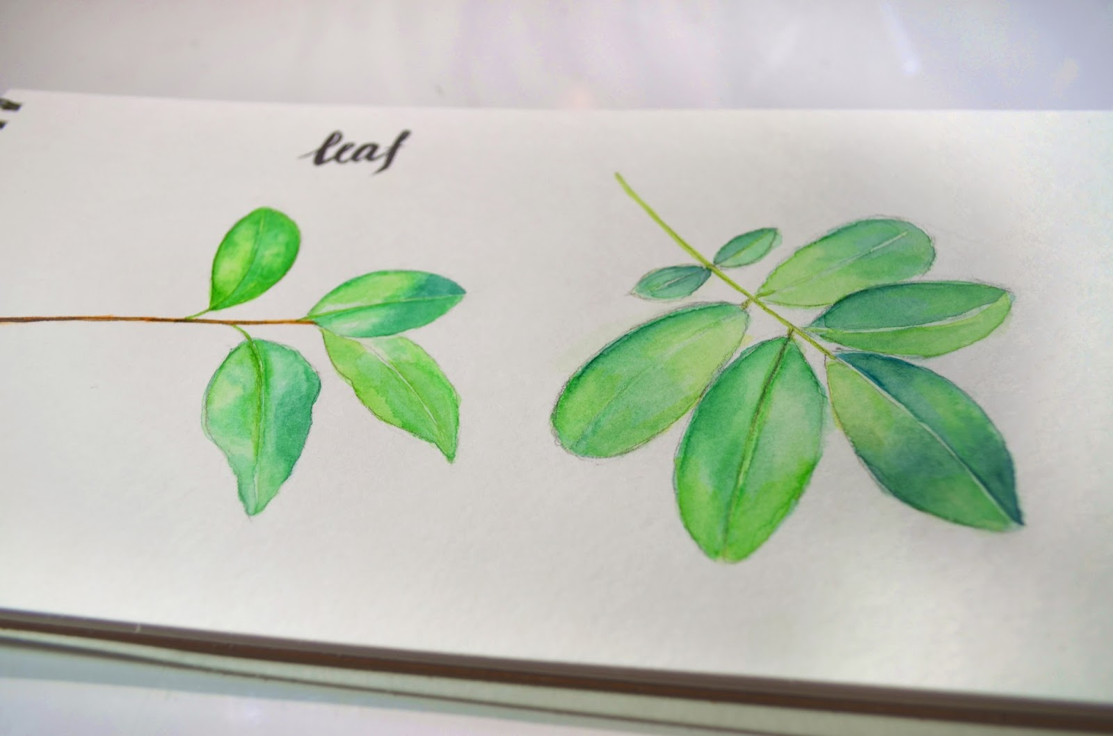 song li design  how to paint simple watercolor leaf